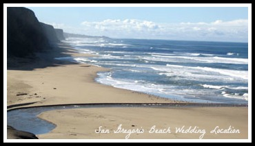 San Gregorio State Beach Wedding Location